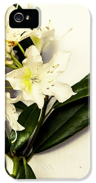 Japanese Flower Art IPhone 5 Case