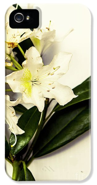 Japanese Flower Art IPhone 5 Case by Jorgo Photography - Wall Art Gallery