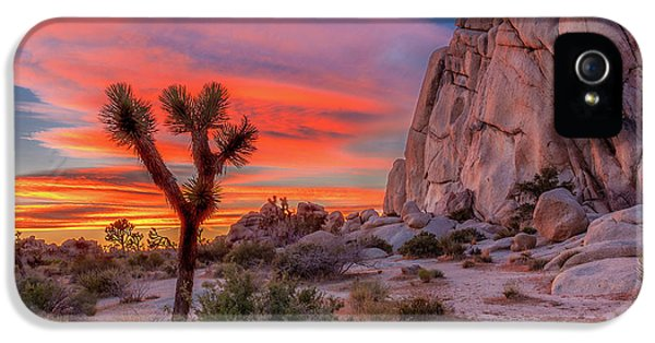 Desert iPhone 5 Case - Joshua Tree Sunset by Peter Tellone