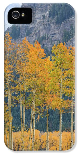 IPhone 5 Case featuring the photograph Just The Ten Of Us by David Chandler