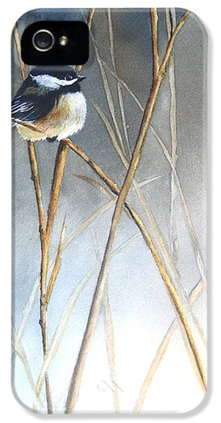 Just Thinking IPhone 5 Case by Patricia Pushaw