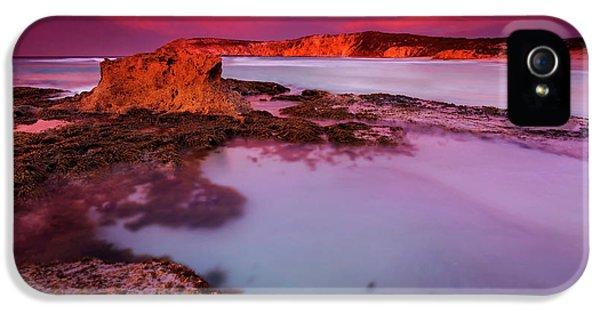 Kangaroo iPhone 5 Case - Kangaroo Island Dawn by Mike Dawson