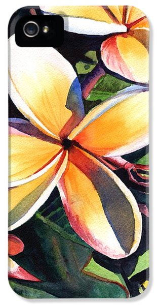 Kauai Rainbow Plumeria IPhone 5 Case by Marionette Taboniar