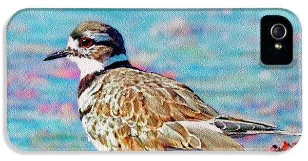 Killdeer  IPhone 5 Case by Ken Everett
