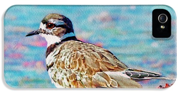 Killdeer iPhone 5 Case - Killdeer  by Ken Everett