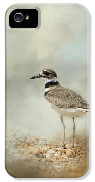 Killdeer iPhone 5 Case - Killdeer On The Rocks by Jai Johnson