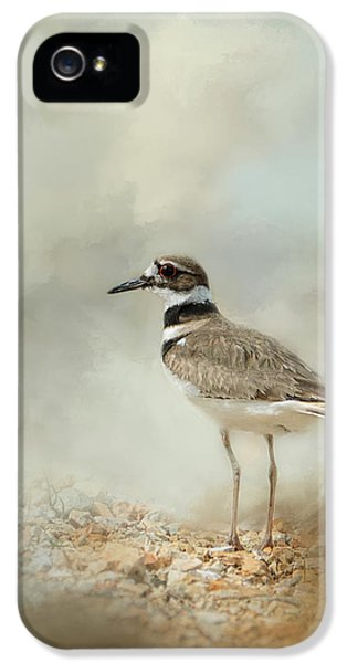 Killdeer On The Rocks IPhone 5 Case by Jai Johnson