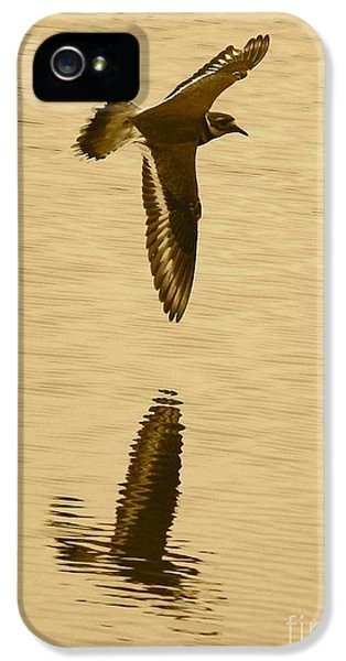 Killdeer Over The Pond IPhone 5 Case by Carol Groenen