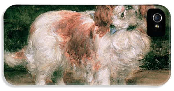 King Charles Spaniel IPhone 5 Case by George Sheridan Knowles