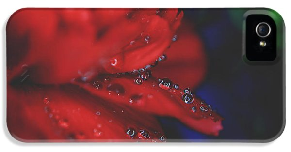 Kisses In The Rain IPhone 5 Case by Laurie Search