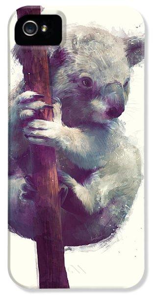 Koala iPhone 5 Case - Koala by Amy Hamilton