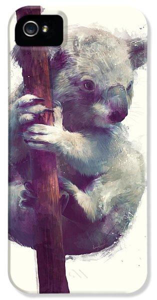 Koala IPhone 5 Case by Amy Hamilton