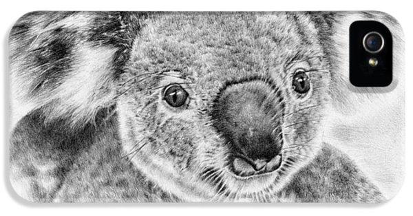 Koala iPhone 5 Case - Koala Newport Bridge Gloria by Remrov
