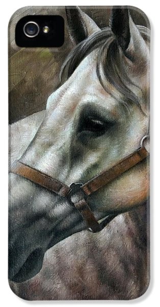 Horse iPhone 5 Case - Kogarashi by Arthur Braginsky