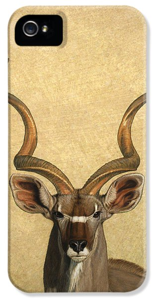 Brown iPhone 5 Cases - Kudu iPhone 5 Case by James W Johnson