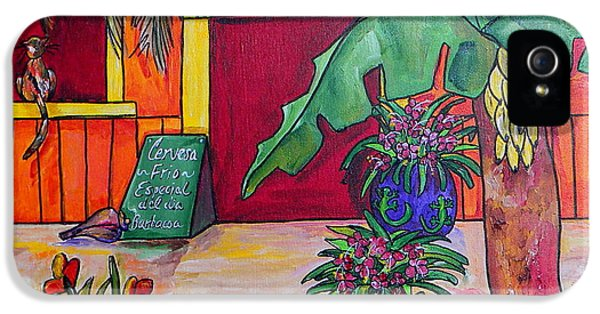 La Cantina IPhone 5 Case by Patti Schermerhorn