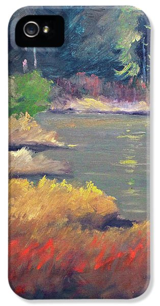 IPhone 5 Case featuring the painting Lagoon by Nancy Merkle