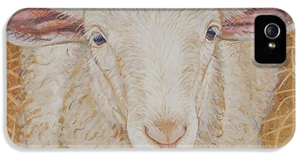 Sheep iPhone 5 Case - Lamb Of God by Christine Belt