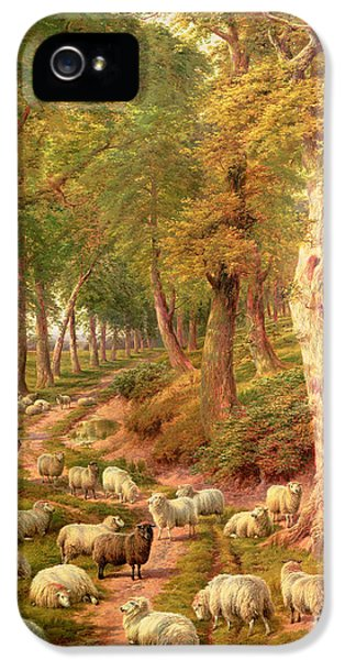 Rural Scenes iPhone 5 Case - Landscape With Sheep by Charles Joseph