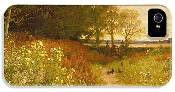 Rural Scenes iPhone 5 Case - Landscape With Wild Flowers And Rabbits by Robert Collinson