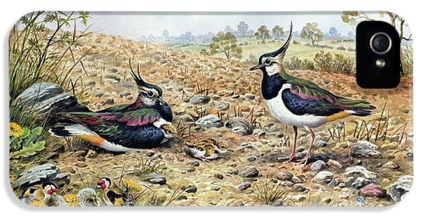 Lapwing Family With Goldfinches IPhone 5 Case by Carl Donner