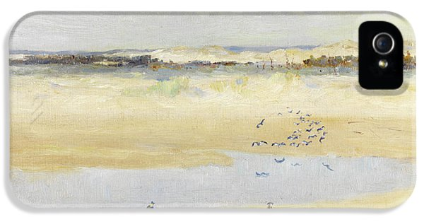 Lapwings By The Sea IPhone 5 / 5s Case by William James Laidlay