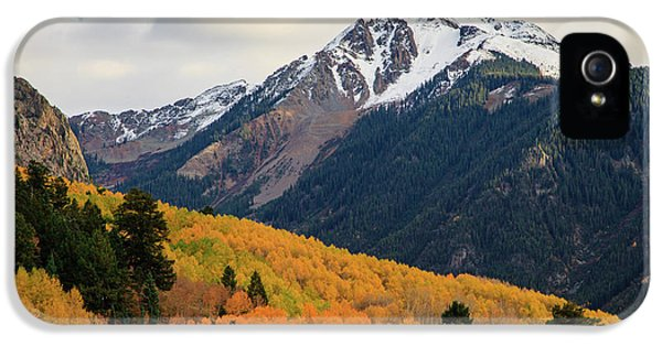 Last Light Of Autumn IPhone 5 Case by David Chandler