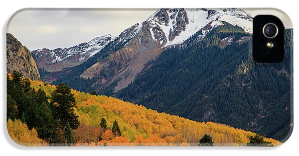 IPhone 5 Case featuring the photograph Last Light Of Autumn by David Chandler