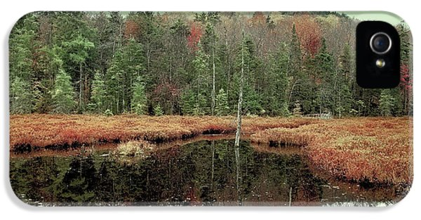 IPhone 5 Case featuring the photograph Last Of Autumn On Fly Pond by David Patterson
