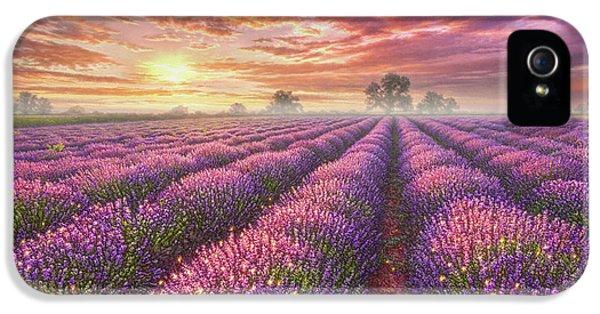 Lavender Field IPhone 5 Case