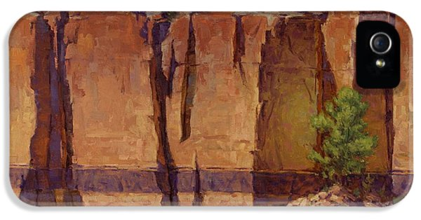 Grand Canyon iPhone 5 Case - Layers In Time by Cody DeLong