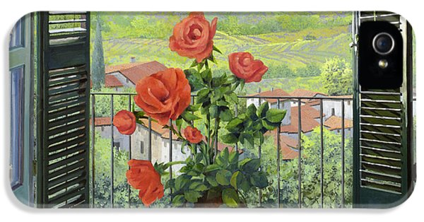 Still Life iPhone 5 Case - Le Persiane Sulla Valle by Guido Borelli