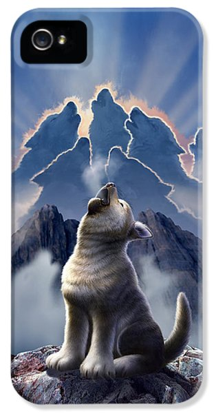 Wolves iPhone 5 Case - Leader Of The Pack by Jerry LoFaro