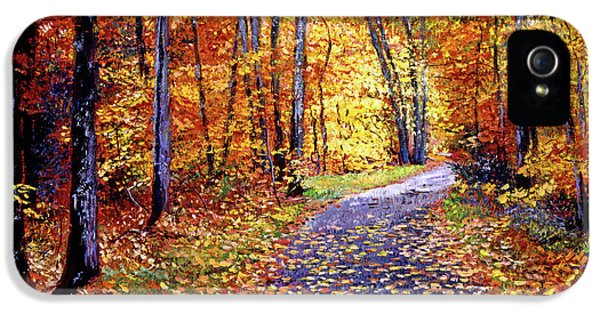 Leaf Covered Road IPhone 5 Case