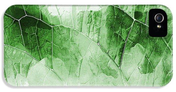 Leaf Pattern  IPhone 5 Case by Tom Gowanlock