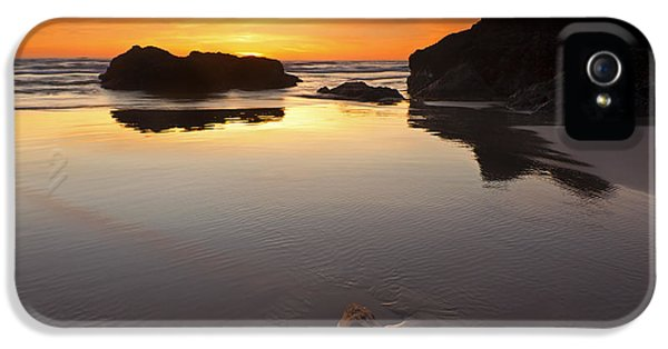 Oregon Coast iPhone 5 Cases - Left by the Tides iPhone 5 Case by Mike  Dawson
