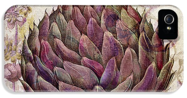 Legumes Francais Artichoke IPhone 5 Case by Mindy Sommers