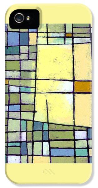 Lemon Squeeze IPhone 5 / 5s Case by Douglas Simonson