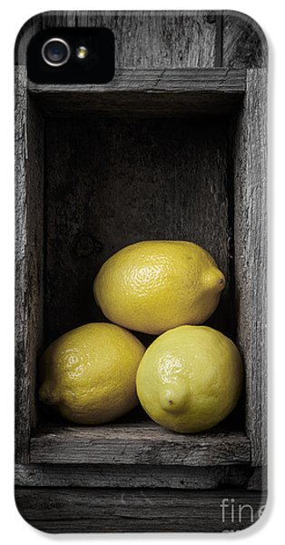 Lemon iPhone 5 Case - Lemons Still Life by Edward Fielding