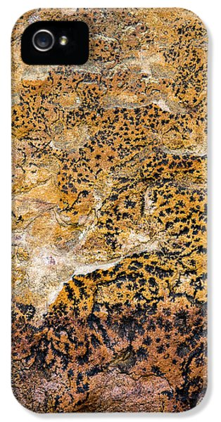 IPhone 5 Case featuring the photograph Lichen Abstract, Bhimbetka, 2016 by Hitendra SINKAR