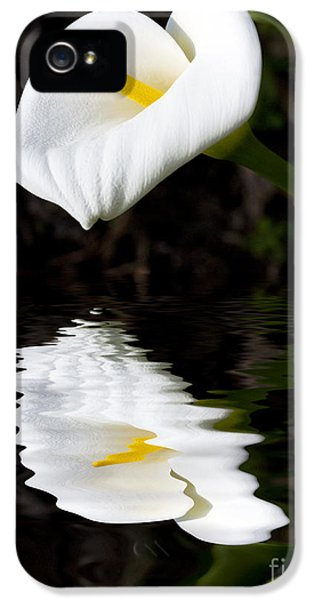 Lily Reflection IPhone 5 / 5s Case by Avalon Fine Art Photography