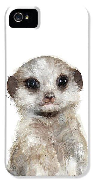 Little Meerkat IPhone 5 Case