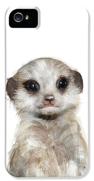 Little Meerkat IPhone 5 Case by Amy Hamilton