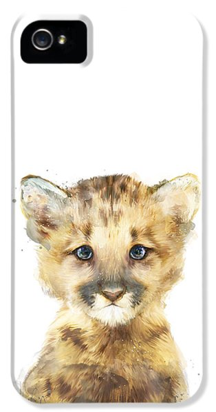 Lion iPhone 5 Case - Little Mountain Lion by Amy Hamilton
