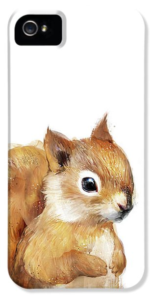 Squirrel iPhone 5 Case - Little Squirrel by Amy Hamilton