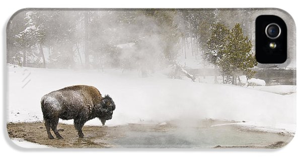 IPhone 5 Case featuring the photograph Bison Keeping Warm by Gary Lengyel