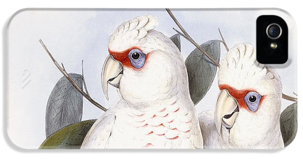 Long-billed Cockatoo IPhone 5 / 5s Case by John Gould