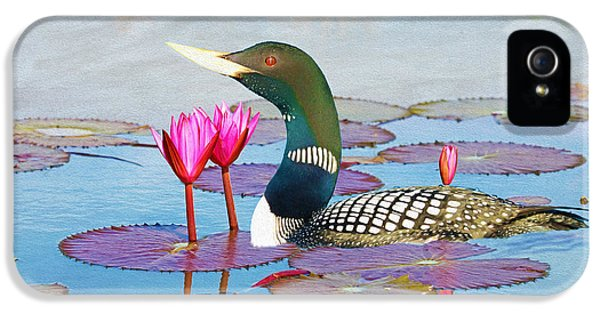 Loon iPhone 5 Case - Loon And Lotus by Laura D Young