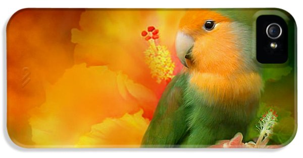 Parrot iPhone 5 Case - Love Among The Hibiscus by Carol Cavalaris