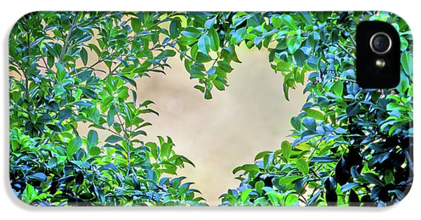 Featured Images iPhone 5 Case - Love Leaves by Az Jackson